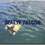 FALCON teleoperated robot