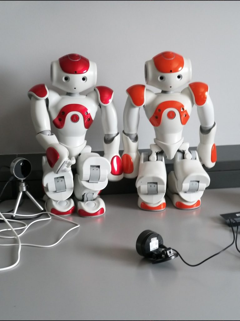 Photo of two humanoid robots NAO